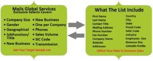 Mails Global Services - Professional Email List - Mailing Addresses Database